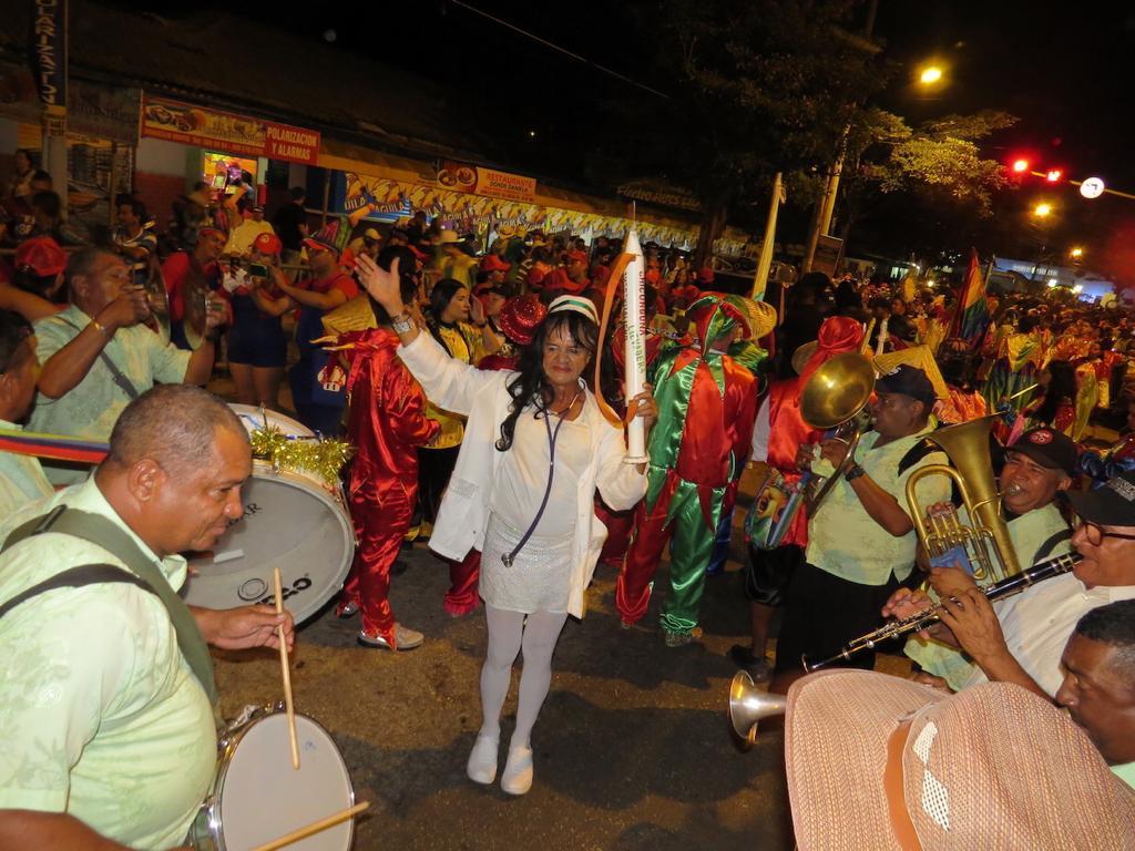 El Carnaval quedó sin su 'Enfermera Superiora'